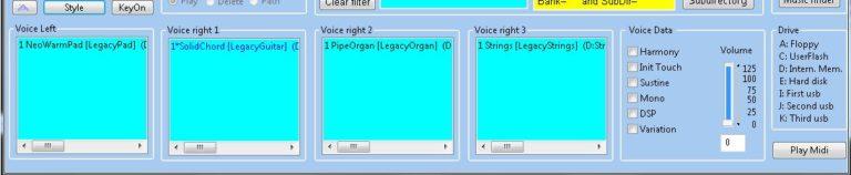 Voice Anzeigen